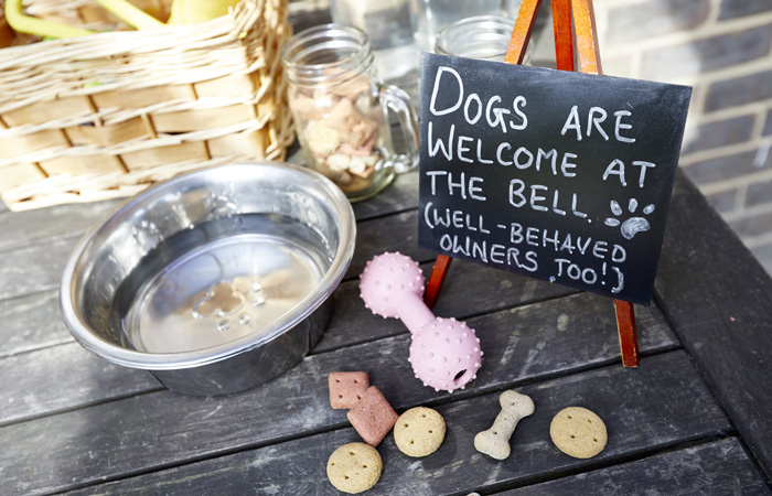 Dog friendly pubs and hotels in the south of England